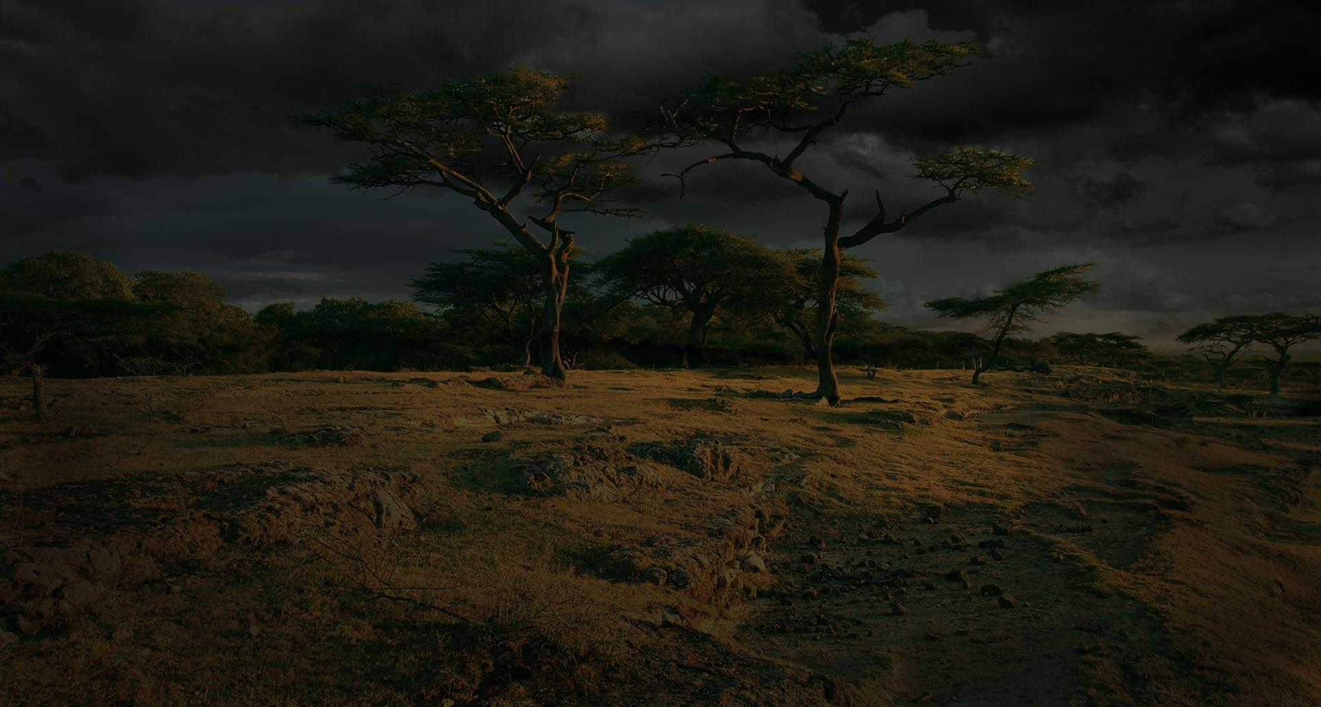 parallax background